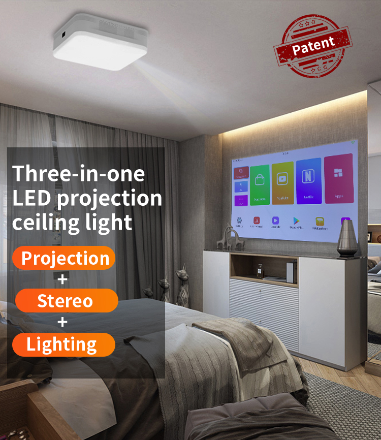 LED projection ceiling light